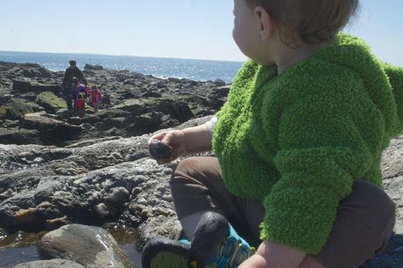 Littlest-tidepooling